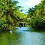 unique times kerala eco tourism main image